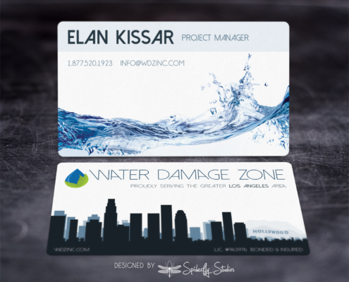 Water Damage Zone Business Cards - Spiderfly Studios