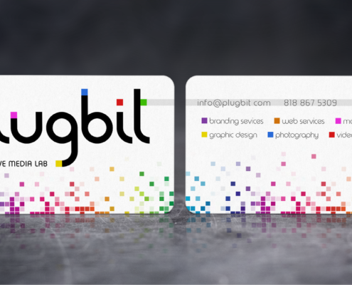 Plugbit Business Cards - Spiderfly Studios