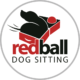 Red Ball Dog Sitting
